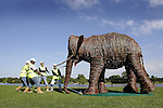 JAMES BOARDMAN / 07967642437 - 01444 412089 .Workmen pull a Life sise willow Elephant into posision in Hyde Park, London September 4, 2007. The Elephant is part of a herd of 13 commissioned by London based charity elephant family.. .