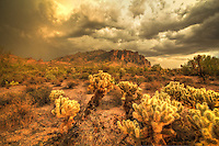 Lost Dutchman's Gold - Arizona<br />