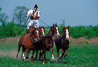 Hungarian Csikos (cowboy) rides a 'Puszta Five' by standing on the horses backs at Bugac on the Great Plain of Hungary RESERVED USE - NOT FOR DOWNLOAD -  FOR USE CONTACT TIM GRAHAM