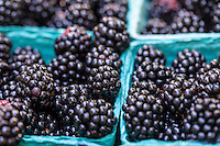 Blackberries in pint boxes at a farmers market.