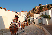 Pack poines on the narrow streets & houses of Hydra,  Greek Saronic Islands.