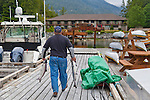Eagle Nook Wilderness Resort and Spa is located on a remote area of Vancouver Island.   Freshly caught Chinook salmon being taken to the resorts cleaning station where they will be prepared for dinner.