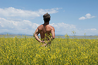 shirtless man standing in a field of yellow wildflowers by a lake in New Mexico