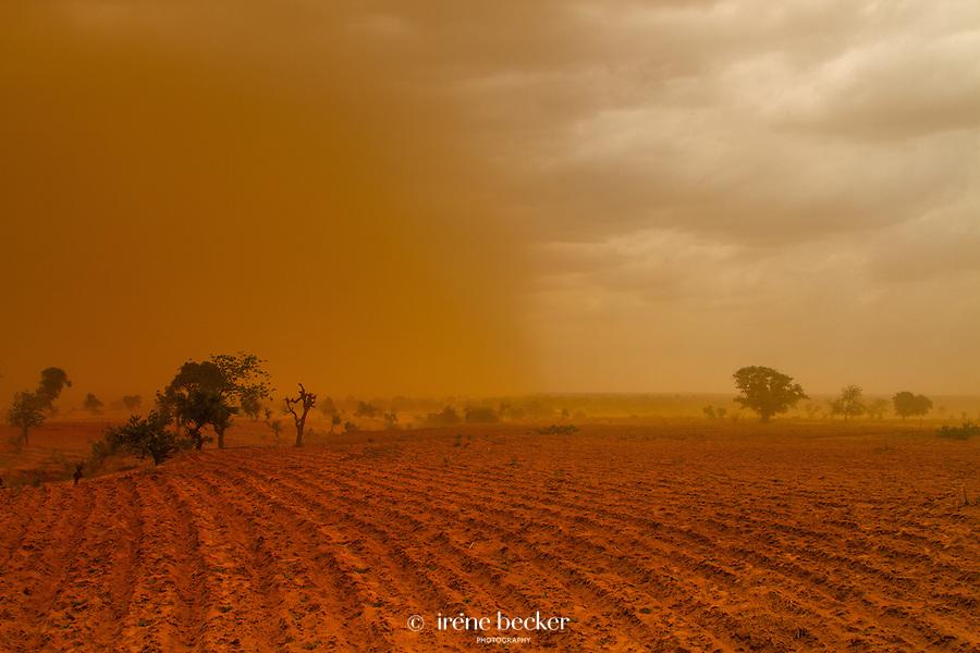 Sandstorm. Kebbi State, Nigeria.