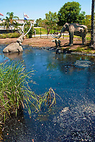 Rancho, La Brea Tar Pits, George C. Page Museum, Hancock Park, Los Angeles, CA famous fossil, active urban Ice Age excavation site