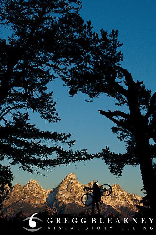 Mountain Biker - Grand Teton National Park - Jackson - Wyoming - USA