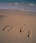 Foot Prints in Sand, Beach, Hawaii<br />