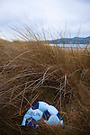 Up the Dubs? Abandoned Gaelic Football on Dollymount Strand, Bull Island.