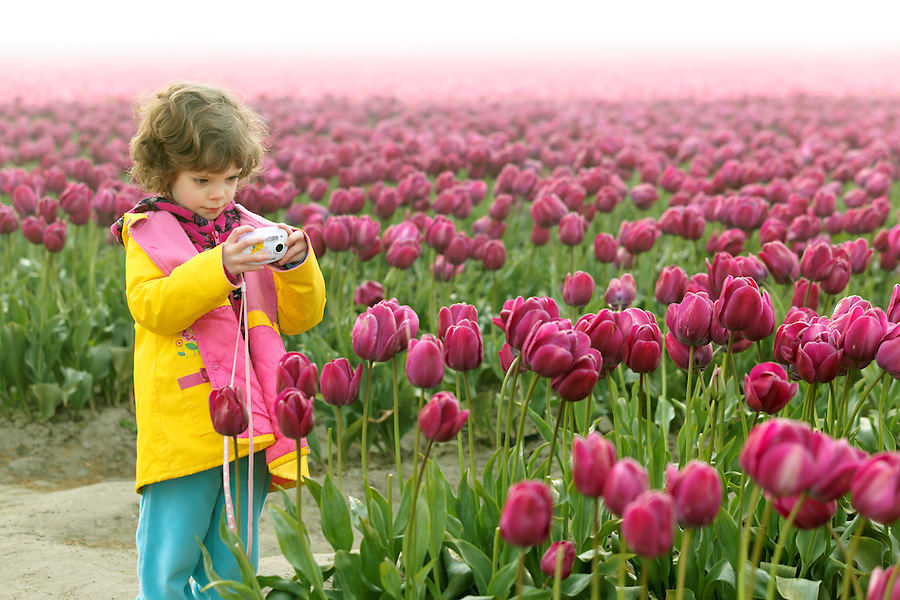 Girl photographing field of tulips, Skagit Valley, Washington, USA