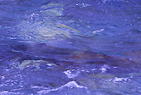 &quot;LIQUID LAVENDER&quot;&quot;<br />