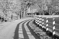 Road at the Red Mile in Lexington, KY.  Infrared (IR) photograph by fine art photographer Michael Kloth.