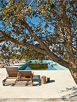 A double wooden sun lounger on the concrete swimming pool terrace seen from beneath an olive tree