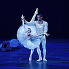 English National Ballet<br /> Swan Lake in-the-round  <br /> Royal Albert Hall, London, Great Britain <br /> 31st May 2016  <br /> rehearsals <br /> <br /> Alina Cojocaru as Odette/Odile<br /> <br /> Osiel Gouneo as Prince Siegfried<br /> <br /> <br /> <br /> <br /> Photograph by Elliott Franks <br /> Image licensed to Elliott Franks Photography Services