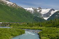 Alaska Railroad passenger train crosses trestle over Placer creek, Chugach mountains, enroute to Whittier, Alaska