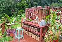 Garden potting bench and containers, galvanized watering cars, baskets, antique tools, pots, asparagus fern growing in old drawer, for charming place outdoors for gardening chores, vegetable corn growing in container pot with Coleus and begonias and flowers, pot of tropical annuals, house deck area above