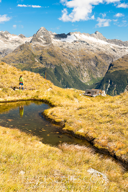 Harris Saddle with hiker on Routeburn Track. Darran Mountains of Fiordland in background, Mt. Aspiring National Park, UNESCO World Heritage Area, Central Otago, New Zealand, NZ