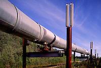 Trans-Alaska Pipeline aka Alyeska Pipeline, Oil Pipeline above ground along Richardson Highway, near Fairbanks, AK, Alaska, USA