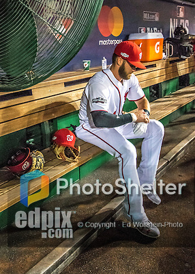 13 October 2016: Washington Nationals outfielder Bryce Harper adjusts his equipment in the dugout prior to Game 5 of the NLDS against the Los Angeles Dodgers at Nationals Park in Washington, DC. The Dodgers edged out the Nationals 4-3, to take Game 5 of the Series, 3 games to 2, and move on to the National League Championship Series against the Chicago Cubs. Mandatory Credit: Ed Wolfstein Photo *** RAW (NEF) Image File Available ***