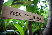 November 26th, 2008_MALDIVES_ A sign points the way to an organic garden at the Soneva Fushi resort island in the Baa Atoll, Maldives.  Soneva Fushi is a leader in green practices and plans to be carbon neutral by 2010 by implementing projects such as a deep-sea water cooling system to replace it's traditional air conditioners.  Photographer: Daniel J. Groshong/Tayo Photo Group