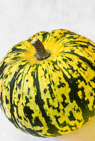 Squash vegetable Sweet Dumpling, winter squash yellow with green stripes