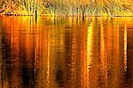 Scenery,water,nature