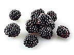 Fresh whole blackberries