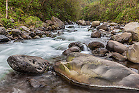 A river whose source is from deep within Waipi'o Valley, northern Hamakua Coast, Big Island.