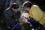 Teens on field trip examining object.