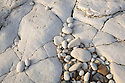 Chalk pebbles on undercliff chalk shelf, Flamborough Head, Yorkshire, UK. February.