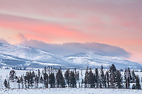 Dawn on the Blacktail Plateau in Yellowstone National Park during winter