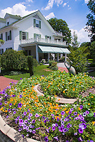 House, nasturtiums, petunias, blue skies, clouds, sunny, bird ornament statutes, trellis,  heirloom and old-fashioned plants flowers
