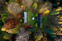 Two houses amongst a forest with the trees changing colour in Autumn in Kashubia.