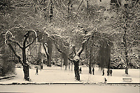 People enjoying a winter walk under the willow trees bordering frozen Lost Lagoon in Stanley Park after snowfall, Vancouver, BC.