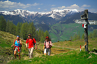 Pongau, Salzburgerland, Austria, May 2006. Trekking the Almenweg means lots of good mountain life, wallking and good food. Photo by Frits Meyst/Adventure4ever.com