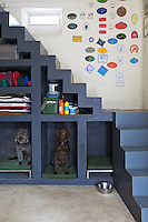 There are practical open shelves under the painted concrete staircase and below them are three enclosures for the family dogs; the emblems on the wall are equestrian prizes won by the owner