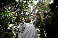 "MAE CHEE SON MAI cuts the Sai Indo trees of the nunnery as part of her gardening duty. She is a 62 years old thai woman who was ordained as nun since 12 years ago. Increasingly mae chii can be found in independent ?nunneries? or ""samnak chii"" where they undertake domestic duties, grow crops, practice meditation, undertake studies in the dharma and, increasingly, provide teaching in the dharma and meditation to lay Buddhists. Mae Chees have to depend on the male dominated Sangha. Despite the status of mae chee is accepted as category under the highest ordination for nuns as ""bhikkhuni"" in Theravada Buddhism, has not recognized yet as official status within the religious communty."