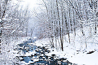 Nine Mile Creek flowing to the Minnesota River after a winter snow storm.