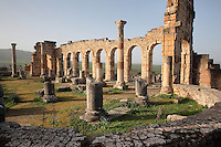 The Roman Basilica, 217 AD, used as courts of justice and city governance, with its colonnaded facade which lined the Forum or marketplace, Volubilis, Northern Morocco. Volubilis was founded in the 3rd century BC by the Phoenicians and was a Roman settlement from the 1st century AD. Volubilis was a thriving Roman olive growing town until 280 AD and was settled until the 11th century. The buildings were largely destroyed by an earthquake in the 18th century and have since been excavated and partly restored. Volubilis was listed as a UNESCO World Heritage Site in 1997. Picture by Manuel Cohen