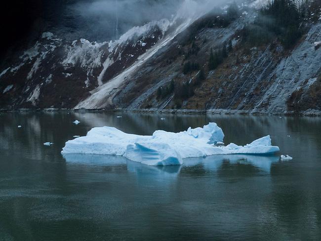 Tracy Arm Fjord, Alaska