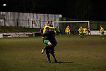 Gornal Athletic 4 Wisbech Town 2, 02/02/2013. Garden Walk Stadium, FA Vase 4th round. Home manager Ian Rowe and defender Pete Wood celebrating the club's decisive fourth goal at Garden Walk Stadium, during the FA Vase 4th round tie between Gornal Athletic (in yellow) from Dudley in the West Midlands and visitors Wisbech Town. Gornal, from the Midland Alliance and appearing for the first time at this stage of the tournament, defeated Wisbech, who play in the Eastern Counties League, by 4-2 after extra-time, after the visitors had lead two-nil after 10 minutes. The FA Vase was a nationwide, non-League English football tournament for semi-professional clubs and the winner of this tie played away at Bodmin Town in the next round. Photo by Colin McPherson.