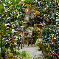 The secluded terrace is paved with large flagstones and lemon trees in containers surround the garden table and chairs