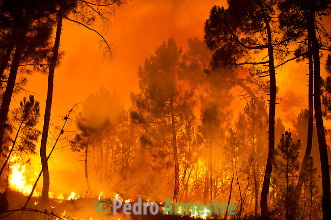 General view of a wildfire in Torneros de Jamuz near Leon on August 20, 2012. Numerous wildfires have broken out across Spain in the sweltering heat in recent weeks, an extra headache for authorities struggling to get the country out of its financial crisis and recession. © Pedro ARMESTRE