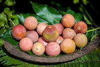 Passion fruit (also called passiflora edulis, purple grenadilla, maracuja or marudja), on display at Tauono's Plantation, Aitutaki Island, Cook Islands.