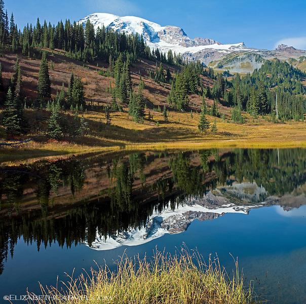 Mount Ranier Reflection