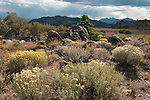 Storm clouds over mountains in the Eastern Sierra Nevada, Toiyabe National Forest, California