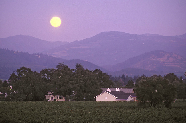 Moonrise over Spottswoode winery, St. Helena, Ca