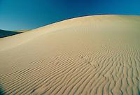 Footprints through the sand  ridges in the desert at Qatar