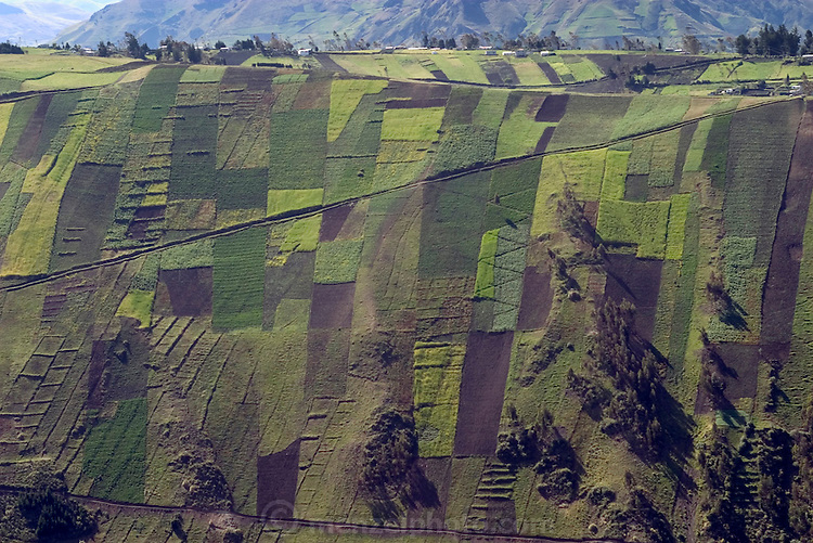 Patchwork fields on steep hills near Ambato, Ecuador. (Supporting image from the project Hungry Planet: What the World Eats.)