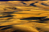 Harvested fields and rolling hills seen from Steptoe Butte Washington State USA