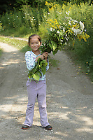 Hortonia, VT, USA - August 16, 2009: Young girl collecting wild flowers in a country lane